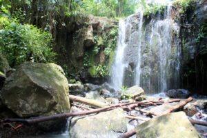 Ligapo_falls_1